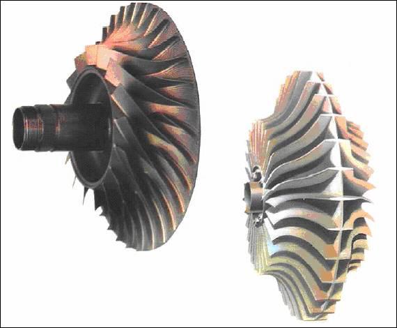 krilchatka